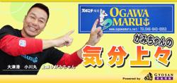 gami_blog.jpg